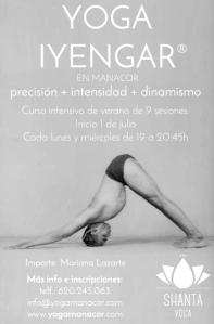 yogaiyengarcartell